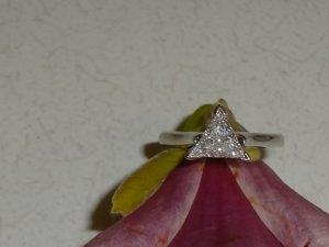 DIAMOND POINTY UP ON FLOWER CLOSER.JPG