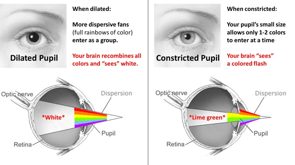 pupils dilated constricted